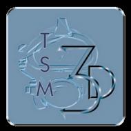 TSM3D